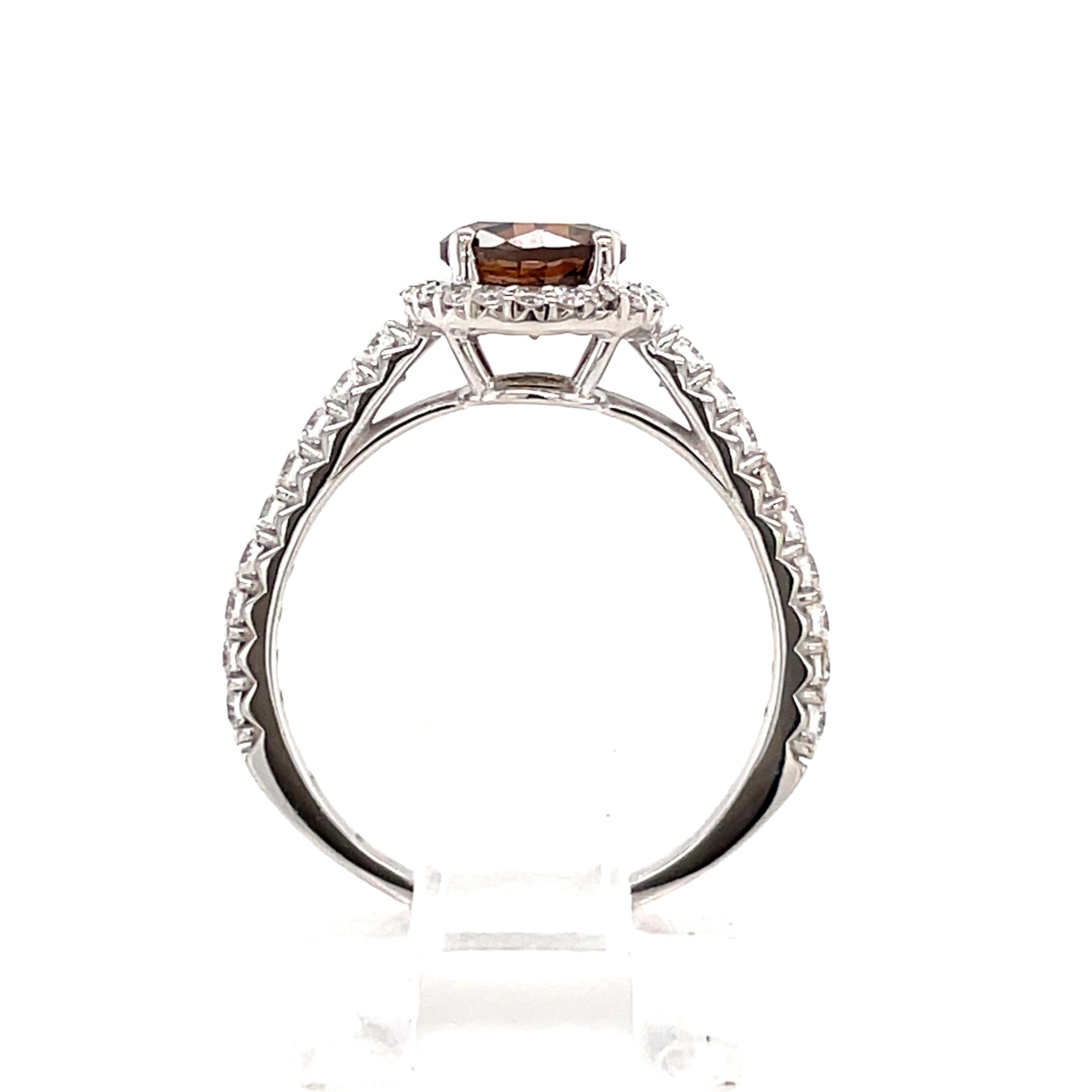 14k White Gold Chocolate Diamond Halo Ring